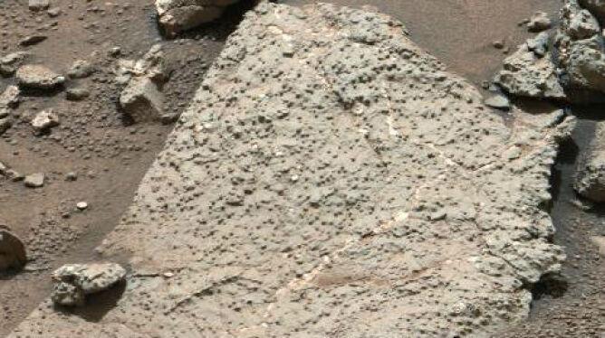 """""""Na Marsie mogły istnieć warunki sprzyjające utrzymaniu się życia"""""""