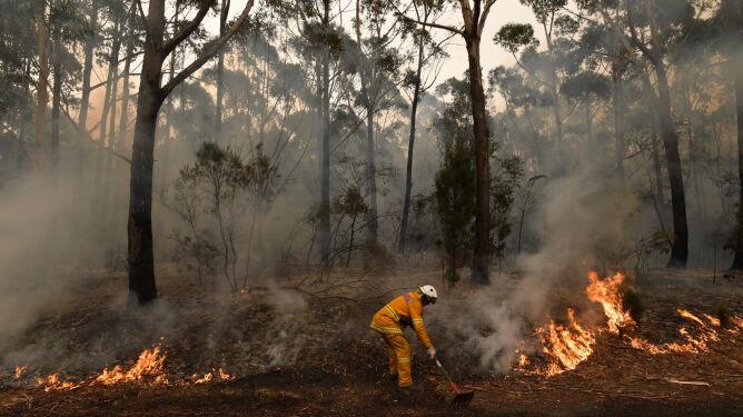 """""""Jeden z najgorszych dni w historii"""". Australia liczy straty, ale pożary nie ustępują"""