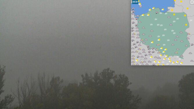 Mgły nad Polską. Sprawdź, <br />gdzie widzialność jest ograniczona