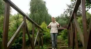 Długi i wąski ogród (odc. 418)