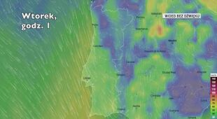 Prognozowane porywy wiatru w Portugalii w kolejnych dniach (Ventusky.com)