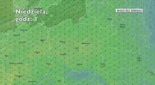 Temperatura w ciągu najbliżyszch pięciu dniu (Ventusky.com)